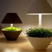 Освещение для растений