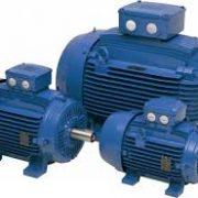 Электродвигатель WEG