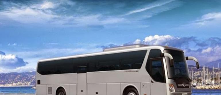 Все что нужно знать о поездке на автобусе