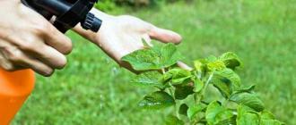 Биофунгициды, их достоинства, особенности и виды